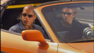 "fff 390x220 - Hilarious Names that Rhymes With ""Vin Diesel"" is Trending on Twitter Space"