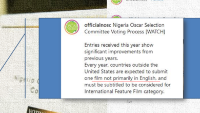 blog lh 390x220 - Did The Oscar Selection Committee Really Missed The Rules??