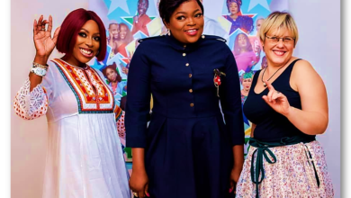 your excellency movie 390x220 - Was Funke X Mo Abudu's Combo Good Enough for a Box Office Hit??