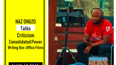 NAZ ONUZO 1 390x220 - Naz Onuzo on Criticism, Consolidated Power and Writing Box Office Films