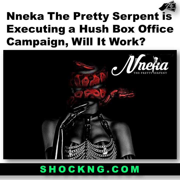 Nneka The Pretty Serpent is Executing a Hush Box Office CampaignWill It Work - Nneka The Pretty Serpent is Executing a Hush Box Office Campaign, Will It Work?