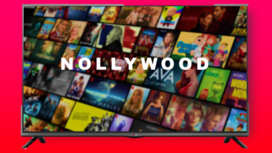 Nollywood goes global with Netflix 390x220 - 2020 Rewind: 9 Nollywood Titles On Netflix That Travelled Hot