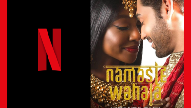 namaste wahala netflic download 390x220 - Namaste Wahala Goes Global With Netflix, Skips Theatrical Release