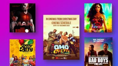 nigerian movies box office hits 2020 390x220 - Top 10 Biggest Opening Of 2020 NGN Box Office