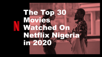 The 30 Watched Movies on Netflix Nigeria 390x220 - The Top 30 Movies Watched On Netflix Nigeria in 2020